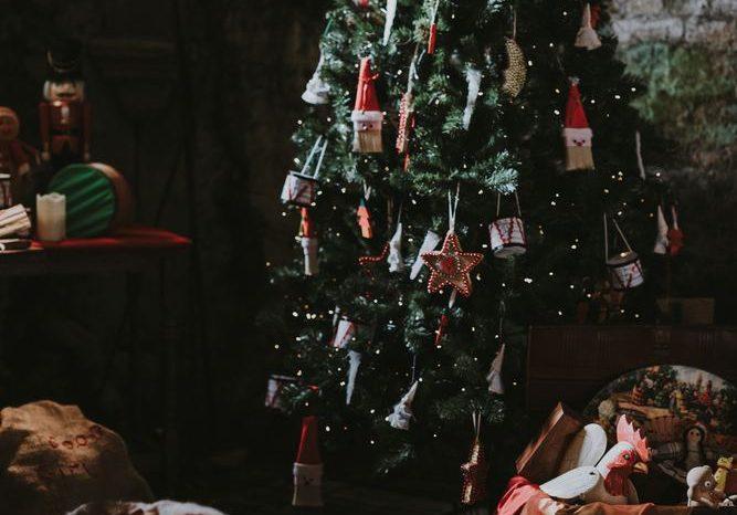 Lidt at huske på i forbindelse med juletræer