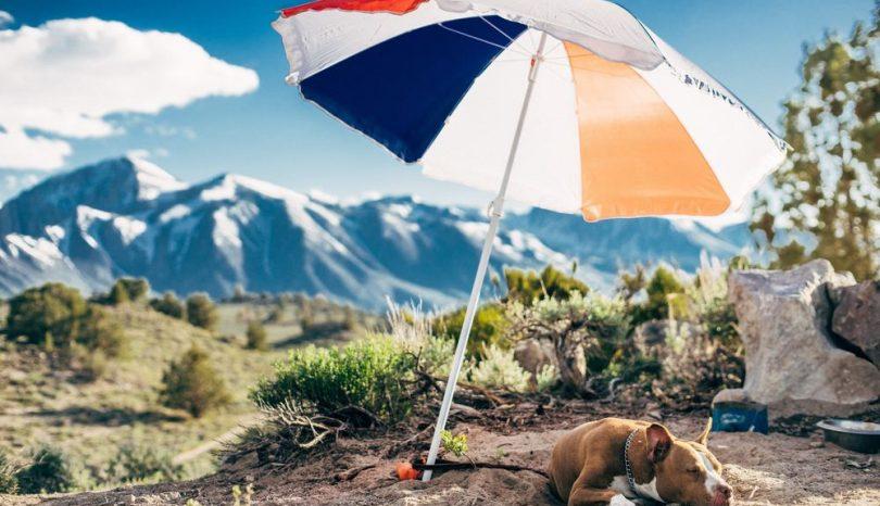 Pas på, at din parasol ikke kommer i vejen for andre